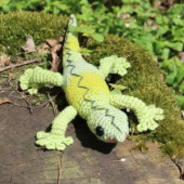Gecko_02